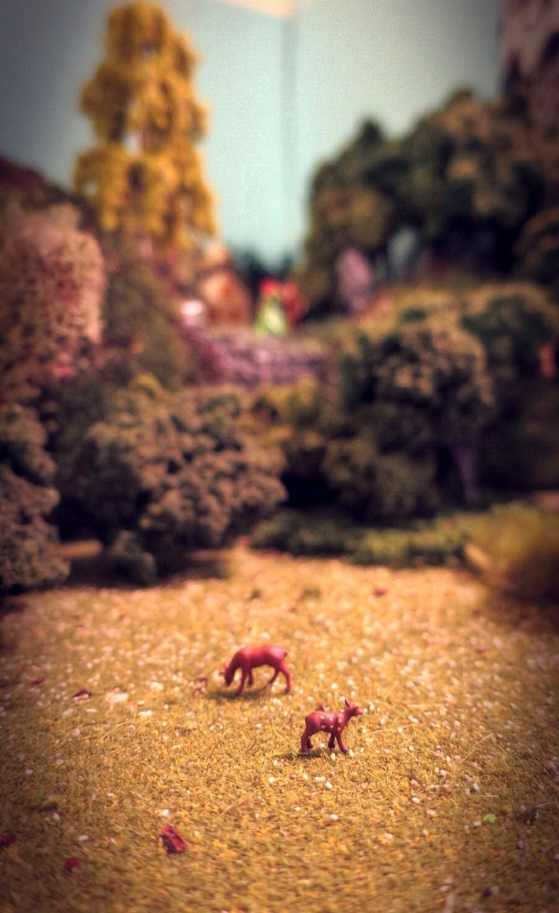 Daily diorama by Lacey Braham